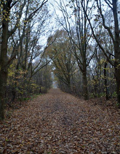 Oranjezon-Oostkapelle-Vrouwenpolder-Landgoed-Twistvliet-Zeeland44227447770_a2b3d20b6c_k